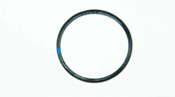 Replacement gasket for 1/2 inch & 3/4 inch Hypro strainer, EPDM, 17000091