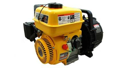 LCT 6Hp Pacer Pump, SEB2PLE5.5