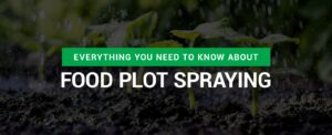 Everything You Need to Know About Food Plot Spraying